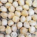 ニンニク ジャンボニンニクの種 300g(充填時) 臭いが少ない おおきなにんにく 島根県産無消毒
