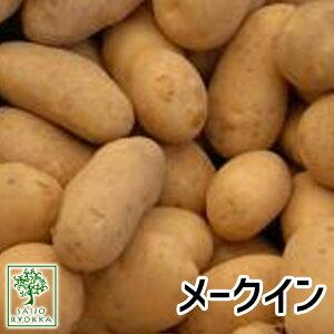 じゃがいも 種芋 メークイン 種芋 ジャガイモ じゃがいもの種 1kg【検査合格済】【サイズ混合】【春植えジャガイモ】【他のジャガイモの種なら同梱可能】