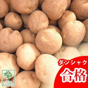 じゃがいも 種芋 ダンシャク 男爵 種芋 ジャガイモの種 1kg【検査合格済】【サイズ混合】【春植えジャガイモ】【他のジャガイモの種なら同梱可能】