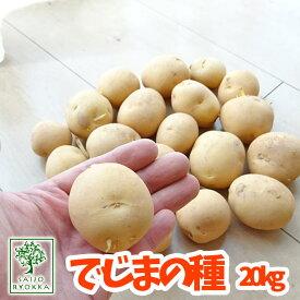 予約種芋!出島(デジマ でじま) ジャガイモ 優良種芋 20kg【充填時】【園芸専門店の野菜の種】