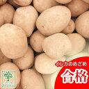 じゃがいも 種芋 インカのめざめ ジャガイモ じゃがいもの種 1kg【検査合格済】【サイズ混合】【春植えジャガイモ】【他のジャガイモの…
