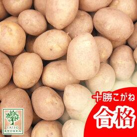 じゃがいも 種芋 十勝こがね とかちこがね 種芋 ジャガイモの種 1kg【検査合格済】【サイズ混合】【春植えジャガイモ】【他のジャガイモの種なら同梱可能】