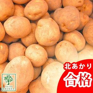 じゃがいも 種芋 キタアカリ 北あかり 種芋 ジャガイモ じゃがいもの種 1kg【検査合格済】【サイズ混合】【春植えジャガイモ】【他のジャガイモの種なら同梱可能】