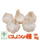 特価!国産ニンニクの種 にんにく ニンニク 1kg(充填時) 安心【園芸専門店の野菜の種】