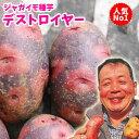 じゃがいも 種芋 デストロイヤー 種芋 ジャガイモ じゃがいもの種 1kg 在庫限り【俵屋】【検査合格済】【サイズ混合】【春植えジャガイ…