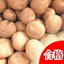 【予約受付中】じゃがいも 種芋 ダンシャク 種芋 ジャガイモの種 1kg【男爵】【ダンシャク】【検査合格済】【サイズ混…