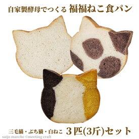 <自家製酵母でつくる 福福ねこ食パン3匹セット> ねこパン 猫パン 猫食パン プレーン ココア かぼちゃ しょくぱん 猫 カフェピルツ CafePilz ※1か月以内に順次出荷 【冷凍配送】