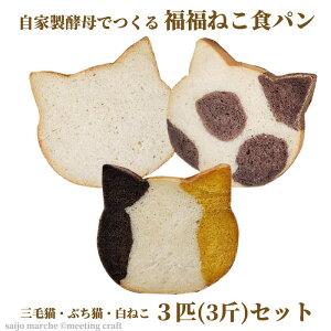 <自家製酵母でつくる 福福ねこ食パン3匹セット> ねこパン 猫パン 猫食パン プレーン ココア かぼちゃ しょくぱん 猫 カフェピルツ CafePilz ※45日以内に順次出荷 【冷凍配送】