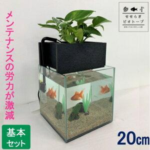 【TVで紹介されました】 せせらぎビオトープ 水替え不要 [基本水槽セット] 【黒】 20cm 水槽用 8L [照明なし] NHK おはよう日本 まちかど情報室 アクアポニクス インテリア 金魚 メダカ 熱帯魚