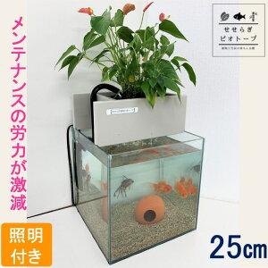 【TVで紹介されました】 せせらぎビオトープ 水替え不要 [基本水槽セット] 25cm 水槽用 15L [照明あり] NHK おはよう日本 まちかど情報室 アクアポニクス インテリア 金魚 メダカ 熱帯魚 観葉植