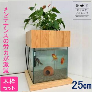 【TVで紹介されました】 せせらぎビオトープ 水替え不要 [木枠台セット] 25cm 水槽用 15L [照明なし] NHK おはよう日本 まちかど情報室 アクアポニクス インテリア 金魚 メダカ 熱帯魚 観葉植物