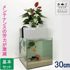 【TVで紹介されました】 せせらぎビオトープ 水替え不要 [基本水槽セット] 30cm 水槽用 27L [照明なし] NHK おはよう日本 まちかど情報室 アクアポニクス インテリア 金魚 メダカ 熱帯魚 観葉植