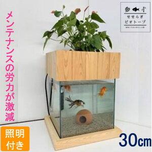 【TVで紹介されました】 せせらぎビオトープ 水替え不要 [木枠台セット] 30cm 水槽用 27L [照明あり] NHK おはよう日本 まちかど情報室 アクアポニクス インテリア 金魚 メダカ 熱帯魚 観葉植物