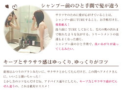 ハンディTRUE電動ヘアブラシブラック/ホワイト/ピンク【あす楽対応】