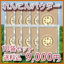 徳島産れんこんパウダー100g[10袋セット[れんこん パウダー 粉末 れんこん 粉]]【あす楽対応】