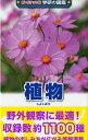 新ポケット版 学研の図鑑(植物)
