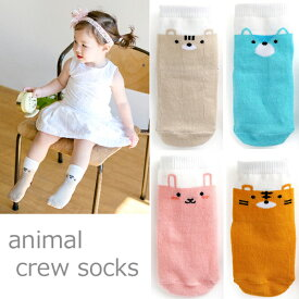 4color animalキッズ クルー丈ソックス キッズ 靴下