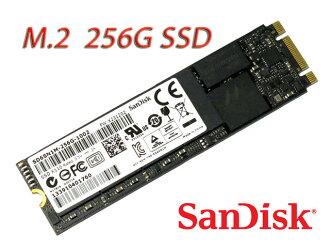 SanDisk X110 M.2(NGFF 2280)SSD SD6SN1M-256G