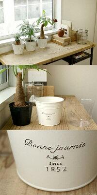 ブリキポットの3鉢セット