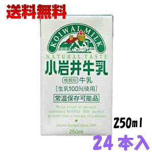 小岩井 牛乳LL 250ml 24本セット