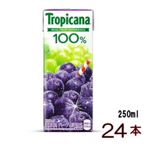 トロピカーナ オレンジ グレープ グレープフルーツ アップル マンゴ- パインアップル パイナップル を2種類2ケース以上で 送料無料トロピカーナ 100%ジュース グレープ 24本