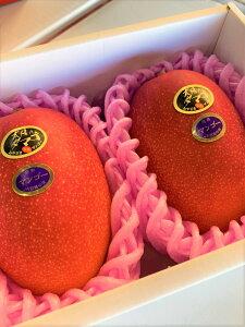 母の日遅れてごめんね!太陽のタマゴ 完熟マンゴー2個!メロンの王様クラウンメロン1個!はやりの台湾産パイナップル2個!