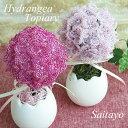 ビーズキット ビーズフラワー 紫陽花のトピアリー 手芸 キット ( ハンドメイド 手作り) ビーズが咲いたよ