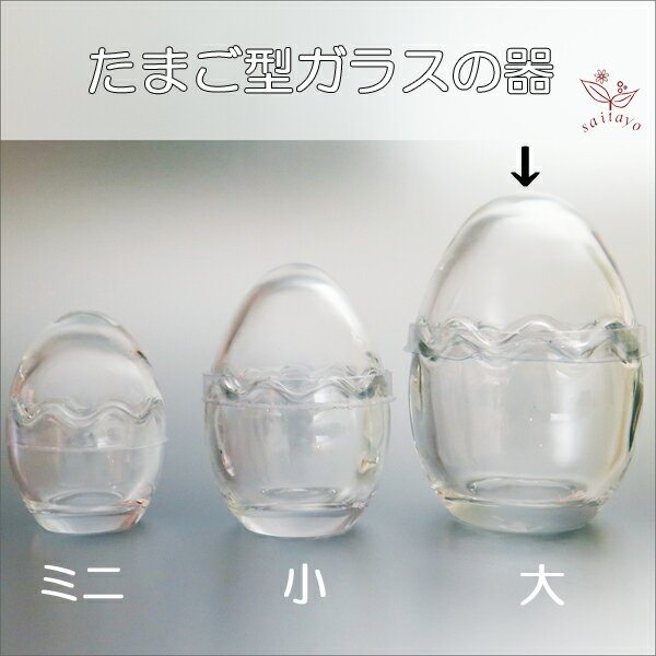 ガラスのたまご型カップ 大 (花器やテラリウムの容器、小物入れなど)