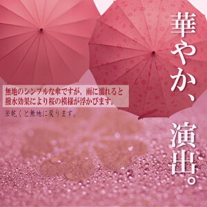 雨に濡れると桜柄が浮き出る16本骨傘
