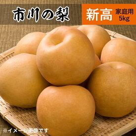 新高梨 5kg 8,10個 市川の梨 家庭用 農園直送 千葉県産 和梨 なし 美味しい 市川 新高 梨