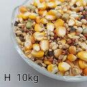 鳩のえさ 特別配合 H 10kg とうもろこし トウモロコシ 粒 ペット 小動物のえさ 餌 エサ 鳥のえさ 鳥の餌 ハトの餌 ハ…