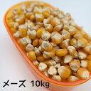 メーズ小粒(インド産) 10kg とうもろこし トウモロコシ ペット 小動物 鳥の餌 鳥のエサ ハムスターのおやつ リスのお…