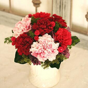 Carnation Pot カーネーションポット(キット・作り方説明書付き)