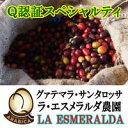 コーヒー豆 送料無料 お試し 珈琲 Q認証スペシャルティ グァテマラ・サンタロッサ・エスメラルダ農園 400g 楽天 買い…