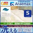 Araeru0052 01