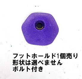 (2)TEKNIK/テクニック・LOAFERS・フットホールド(パープル/FOOT)【バラ売り(1個売り)】【クライミングホールド(FOOT)】