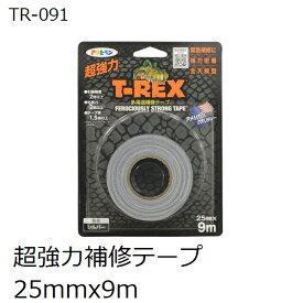 アサヒペン TR-091 T-REX 屋内外 強力多用途補修テープ 25x9m シルバー色(ダクトテープ)