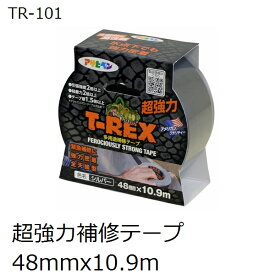アサヒペン TR-101 T-REX 屋内外 強力多用途補修テープ 48x10.9m シルバー色(ダクトテープ)