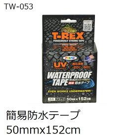 アサヒペン TW-053 T-REX 屋内外 簡易防水テープ 50x152cm 黒色(ウオータープルーフテープ)
