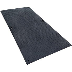 川上 ウッドプラスチック Wボード 1219×2438(4×8サイズ) ブラック 《2枚入》〔品番:B1224-15-BK〕[8683830×2]「法人・事業所限定,直送元」