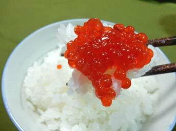 紅鮭すじこ・醤油漬け「1kg」