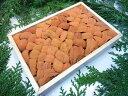 【訳あり】バフンウニ「折箱250g」