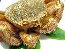 特大・活毛蟹「一尾約800g」