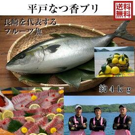 青空レストラン に出た フルーツ魚 送料無料 平戸なつ香 ブリ 4kg 長崎 を代表する フルーツ 魚 !調理しやすいように内臓を取り除いて発送します 鰤 活〆 みかん オレンジ 兄弟 ブリ