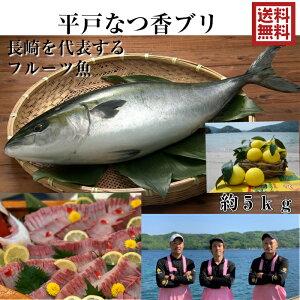 【長崎 フルーツ魚】 送料無料 平戸なつ香 ブリ 約5kg 長崎を代表する フルーツ 魚!調理しやすいように内臓を取り除いて発送します 鰤 活〆みかん オレンジ 青空レストラン 兄弟