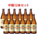 キリンビール 一番搾り 中瓶 ビール 500ml 12本セット 送料無料 (北海道・沖縄は送料1000円、クール便は+700円)