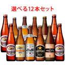 国産スタンダードビール 中瓶 500ml 選べる12本セット ビール 送料無料 (北海道・沖縄は送料1000円、クール便は+700円)