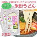 送料無料 米粉うどん 3食セット 米粉 麺 国産 小麦卵アレルギー アトピー 食塩不使用 グルテンフリー コシヒカリ