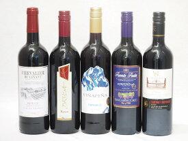 セレクション 赤ワイン 5本セット( スペインワイン 1本 フランスワイン 1本 イタリアワイン 1本 チリワイン 2本)計750ml×5本 バレンタイン