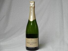 【辛口 6本】 ハウメ・セラ ブリュット・ナチューレ karakuti スペインスパークリングワイン750ml